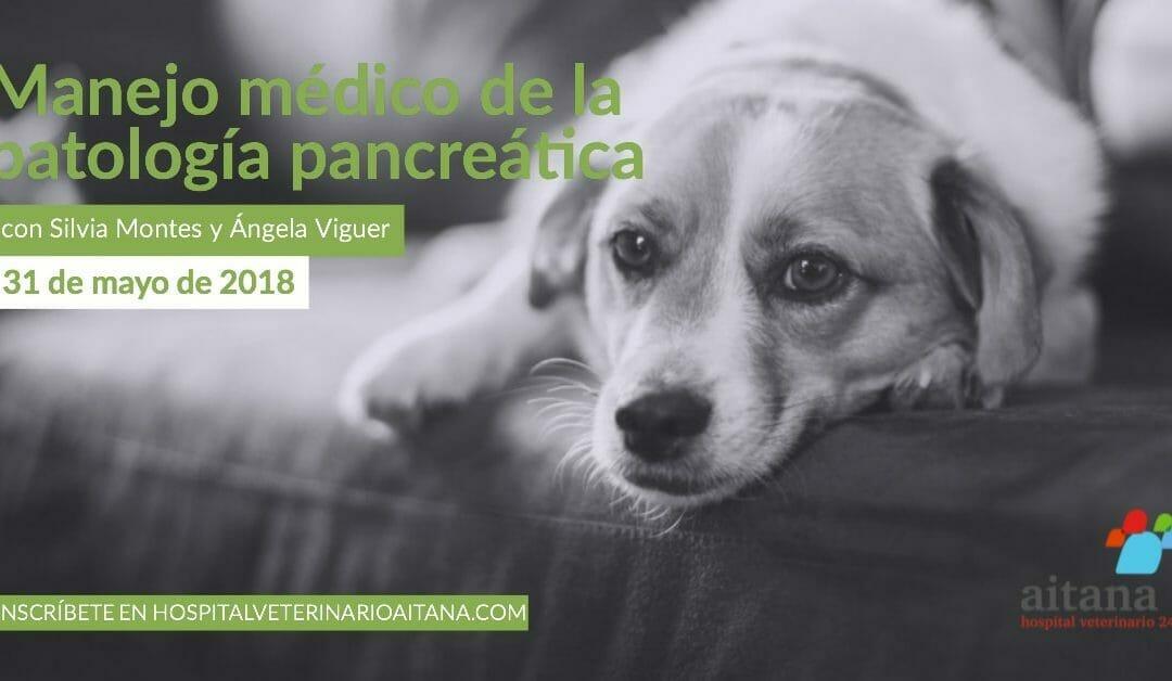 Manejo veterinario de la patología pancreática