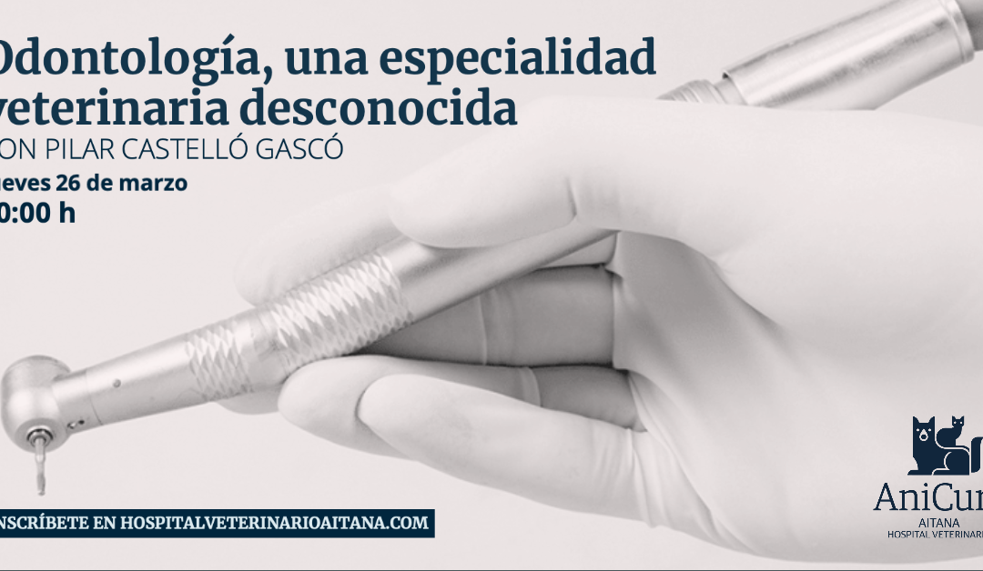 Odontología, una especialidad veterinaria desconocida