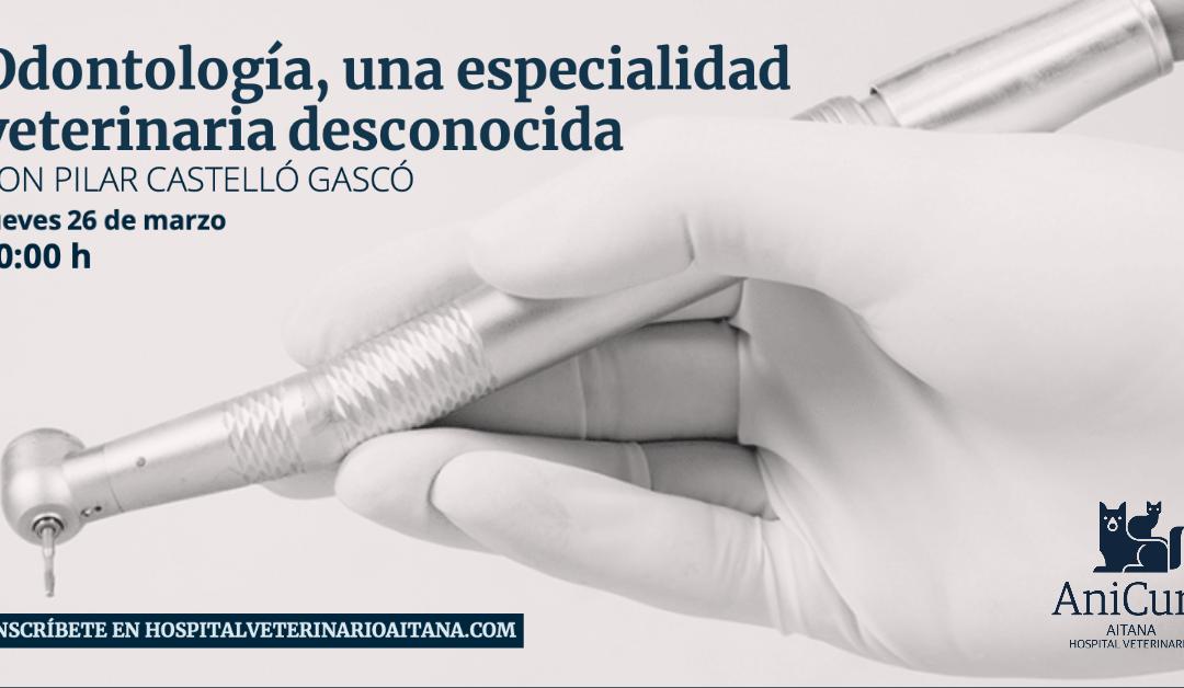 Jornada odontologia veterinaria