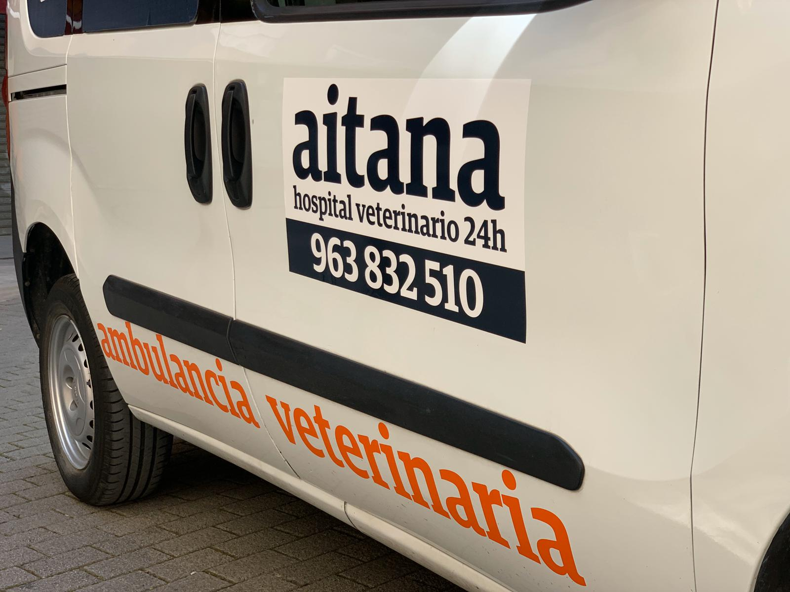 Ambulancia Veterinaria Valencia