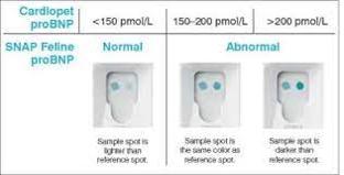 Uso de marcadores cardiacos como Troponina I y pro-BNP